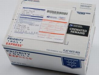 USPS Customs Declaration Tracking for International Shipments